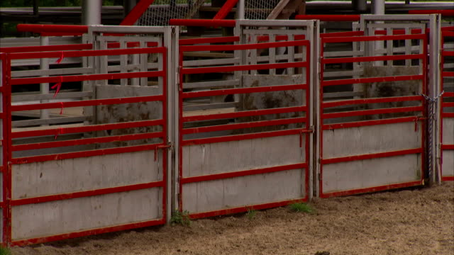 Three empty bucking chutes gates in bull riding arena Sports