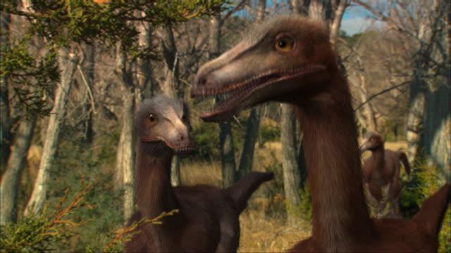CGI, MS, Three Eoraptors in forest