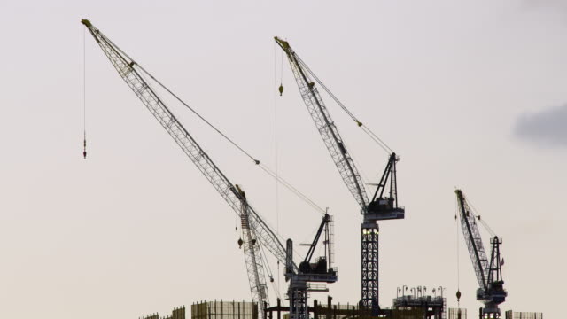 Three exceptionally tall construction cranes stand still against a clear sky in the early morning.