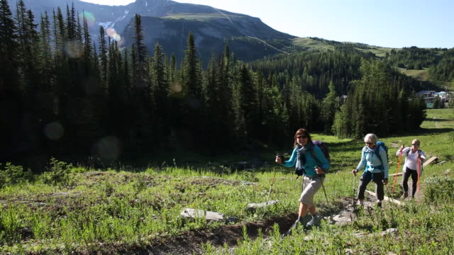three female friends hike together thru mountain meadow - three people stock videos & royalty-free footage