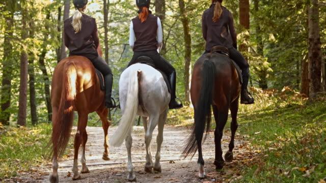 vídeos y material grabado en eventos de stock de tu tres amigas en un relajante paseo a caballo - manada