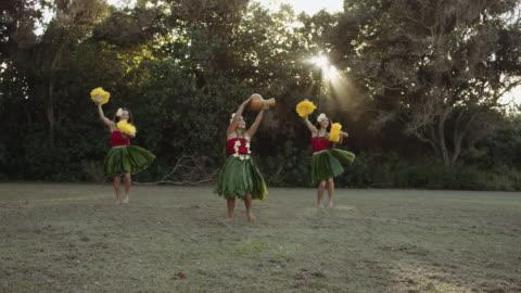 slo mo three female hula performers - kauai stock videos & royalty-free footage