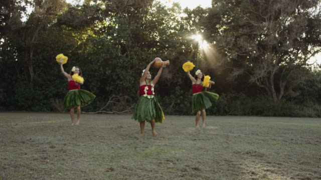 vídeos de stock e filmes b-roll de slo mo three female hula performers - kauai