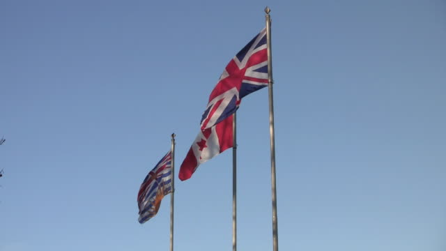 ws la three flags blowing in wind / vancouver, british columbia, canada - bandiera del canada video stock e b–roll