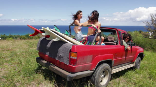 three friends parked on grass near coast in off road vehicle - furgone video stock e b–roll