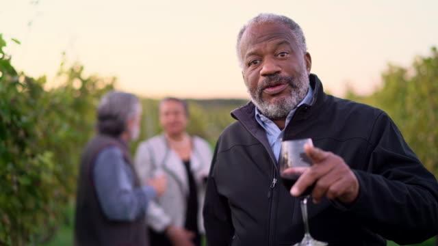 vídeos y material grabado en eventos de stock de tres amigos cata el vino tinto de la bodega en long island, estado de nueva york, estados unidos. - vino tinto