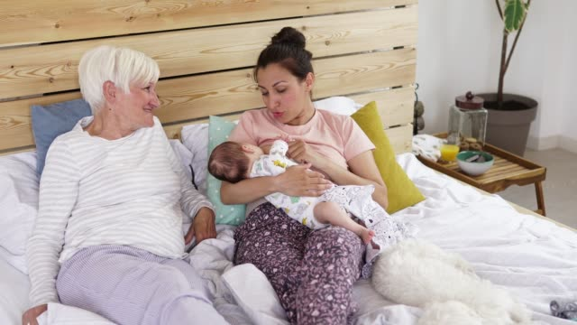 three generation family enjoying time together - woman breastfeeding animals stock videos and b-roll footage