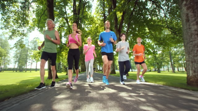 slo mo ts three generation family jogging in a beautiful park - distant stock videos & royalty-free footage