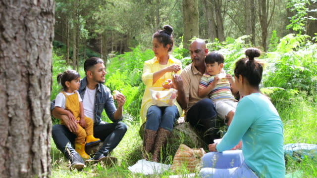 three generation family picnic - tree area stock videos & royalty-free footage
