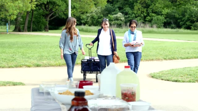 three generations of women arriving at family picnic - cooler container stock videos & royalty-free footage