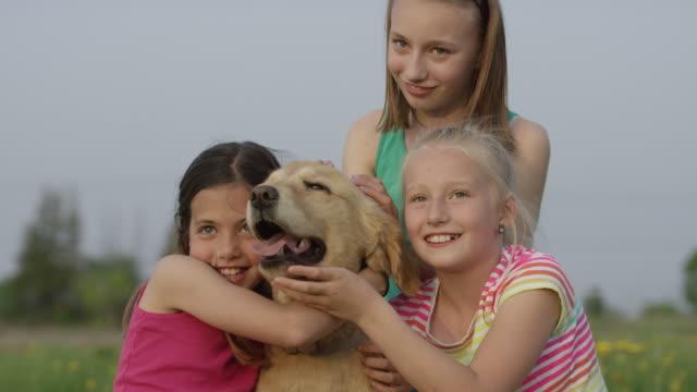 three girls and their best friend - golden retriever stock videos & royalty-free footage