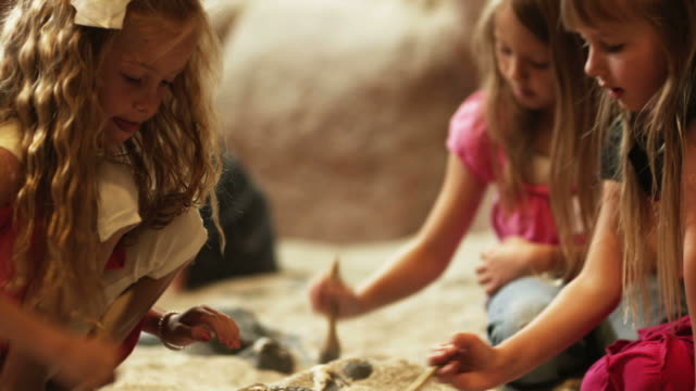 ms pan three girls (4-5, 6-7) brushing sand from fossils at excavation site in natural history museum, lehi, utah, usa - lehi stock videos & royalty-free footage