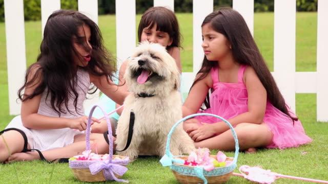 three girls playing with a dog - ペット点の映像素材/bロール