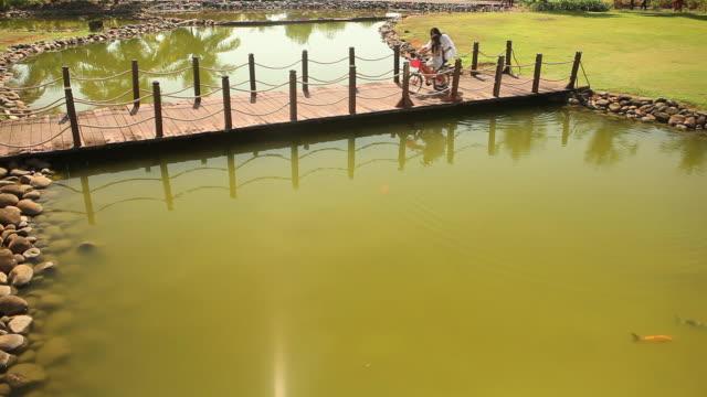 vídeos y material grabado en eventos de stock de three girls standing on a footbridge in a garden  - cuatro animales