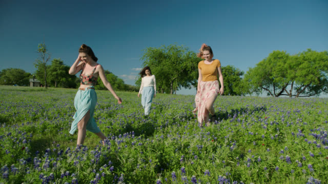 WS SLO MO. Three girls walk through field of wildflowers on bright sunny day.