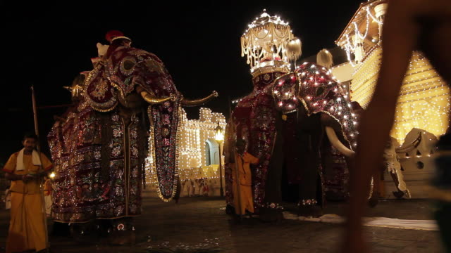 MS Three grand elephants standing ready for Buddhist Procession 'Esala Perahera' in front of 'Temple of Tooth' AUDIO / Kandy, Central Province, Sri Lanka