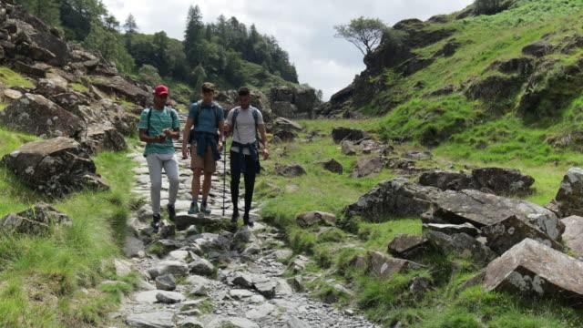 3人のハンサムな探検家 - 登山用ストック点の映像素材/bロール