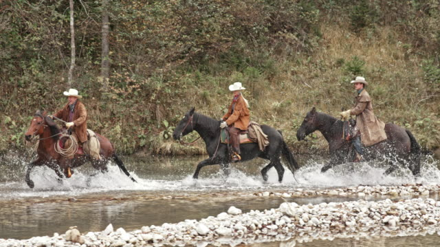 slo mo three herdsmen riding horses across river - small group of animals stock videos & royalty-free footage