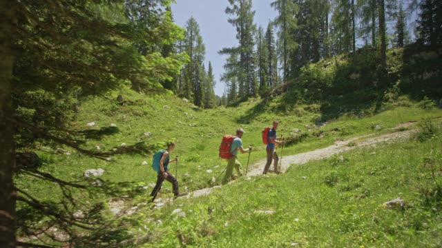ts three hikers walking on a path in sunshine - hiking pole stock videos & royalty-free footage