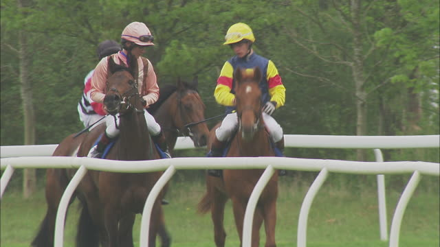 ws pan three jockeys riding on horses walking at newbury racecourse / newbury, england, uk - see other clips from this shoot 1045 stock videos and b-roll footage