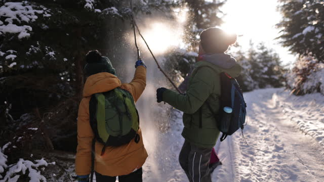 three kids enjoying hiking in winter forest. - hiking pole stock videos & royalty-free footage