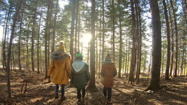 vidéos et rushes de trois enfants randonnée dans la forêt - endroit isolé