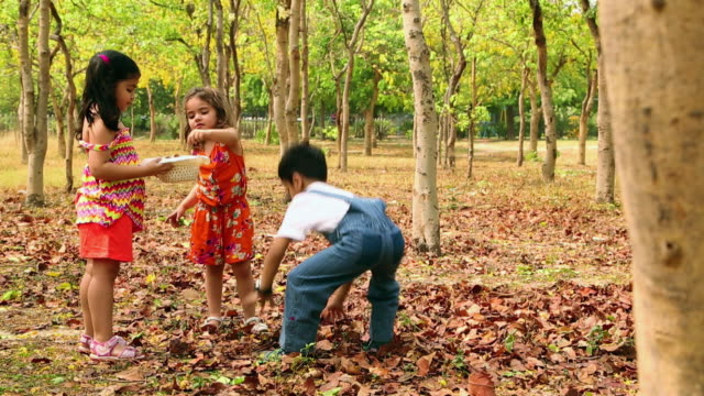 three kids playing with leaves in the park, delhi, india - haarzopf stock-videos und b-roll-filmmaterial