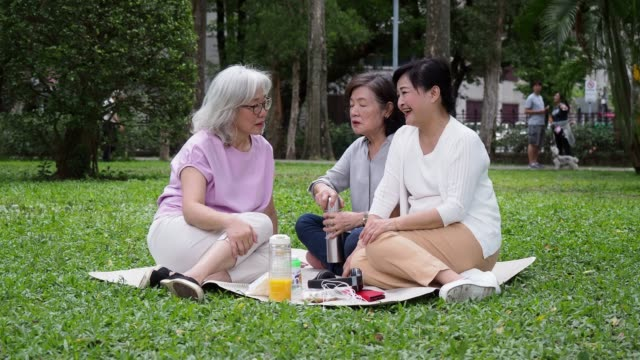 three ladies having a picnic at the park together - east asian ethnicity stock videos & royalty-free footage