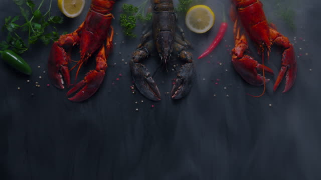 vídeos de stock e filmes b-roll de three lobsters with fresh parsley, dill  , lemon, garlic,red chili   and pepper beans with tope view. - marisco