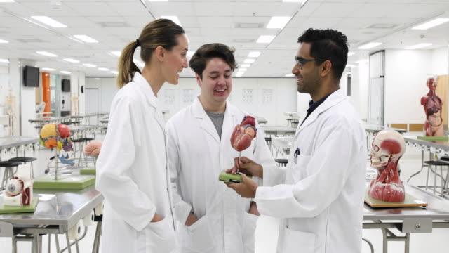vídeos de stock, filmes e b-roll de três estudantes de medicina que colaboram no laboratório da universidade - jaleco de laboratório