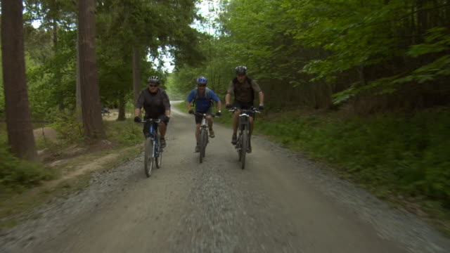 slo mo ws ts three men cycling on dirt road in bedgebury forest / kent, england, uk - see other clips from this shoot 1036 stock videos and b-roll footage
