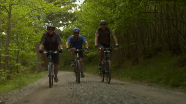 LA WS TS Three men cycling on dirt road in Bedgebury Forest / Kent, England, UK