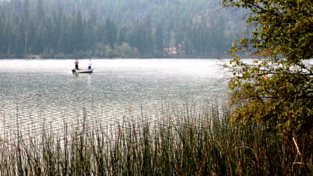 three men in fishing boat fishing on calm misty mountain lake. - fishing industry stock videos & royalty-free footage