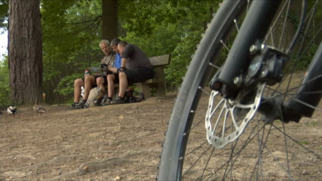la ws three men sitting on bench and reading map near bike while duck waddles past in bedgebury forest / kent, england, uk  - see other clips from this shoot 1036 stock videos and b-roll footage