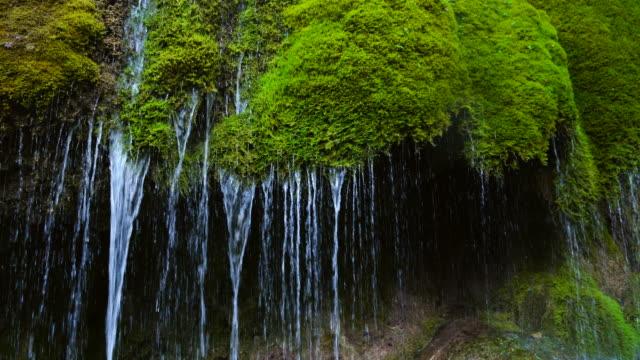 three mills waterfall, vulkaneifel nature park and geopark, western eifel territory, eifel region, germany, europe - western europe stock videos & royalty-free footage