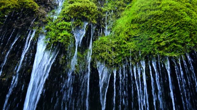 three mills waterfall, vulkaneifel nature park and geopark, western eifel territory, eifel region, germany, europe - geschützte naturlandschaft stock-videos und b-roll-filmmaterial