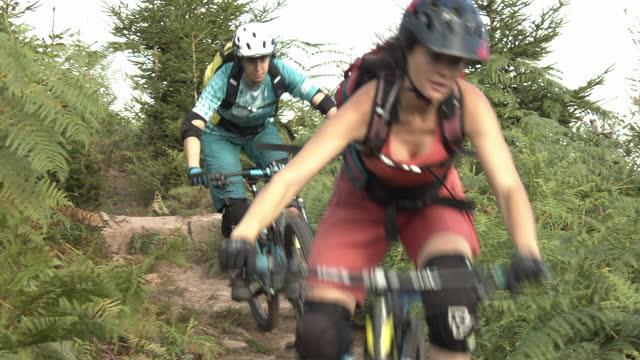 drei mountainbiker steigen durch den wald - 25 29 jahre stock-videos und b-roll-filmmaterial