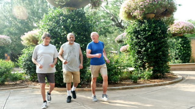 three multi-ethnic men power walking together in park - 60 69 years stock videos & royalty-free footage
