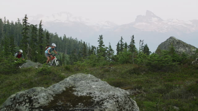 WS PAN Three people cycling on mountain trail, Coast Mountains, Squamish, British Columbia, Canada