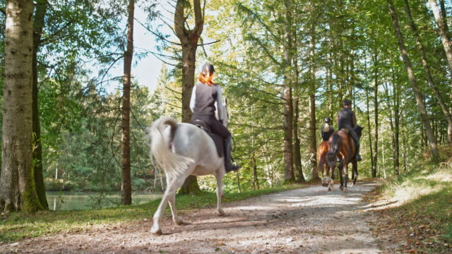 湖に沿って cantering 馬に乗って3人のスローモー ds - 乗馬点の映像素材/bロール