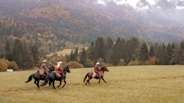 aerial tre personer rida sina hästar över en äng - galoppera bildbanksvideor och videomaterial från bakom kulisserna