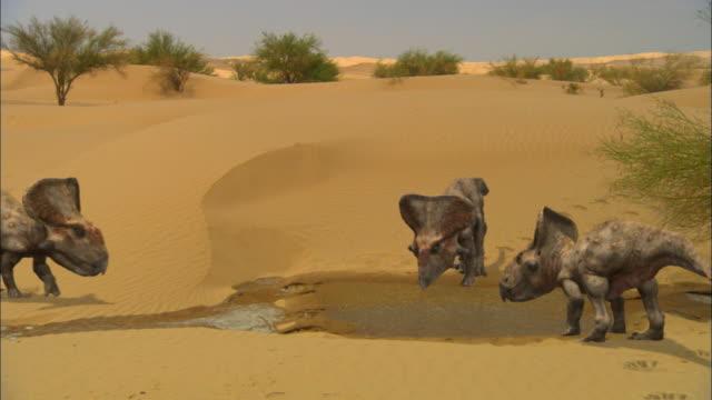 CGI, MS, Three Protoceratopses at waterhole