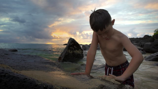 three quarter shot of boy playing in the rising tide - pantaloncino da bagno video stock e b–roll
