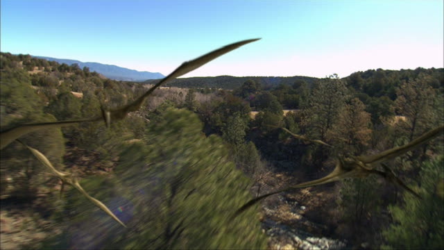 three quetzalcoatlus, reptile-like birds, fly over prehistoric treetops. - extinct stock videos & royalty-free footage