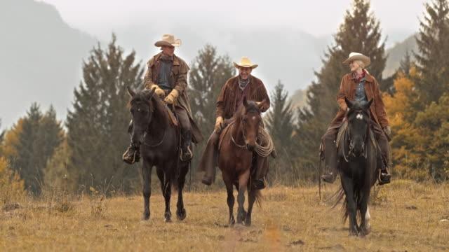 vídeos y material grabado en eventos de stock de ds tres rancheros a caballo en prado - small group of animals