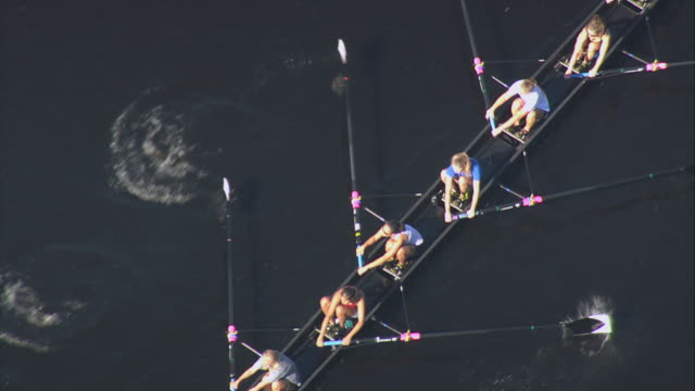 AERIAL Three rowing teams of eight practicing together in calm water beside freeway / Boston, Massachusetts, United States