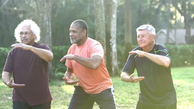 Three senior man practicing tai chi in park