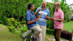 Three Senior Men Walking In The Park Delhi India Stock