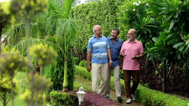 Three senior men walking in the park, Delhi, India