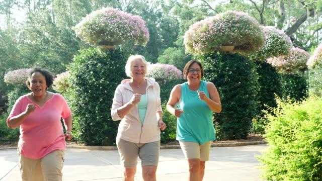 vídeos de stock e filmes b-roll de three senior women exercising together - andar depressa
